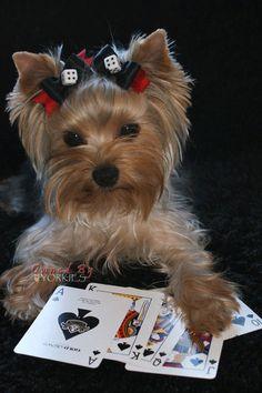 Cara de póquer ♧♧♧