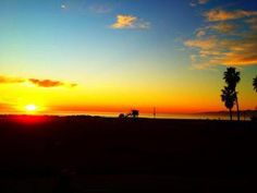 Venice Beach, CA. http://www.gsom.com/places