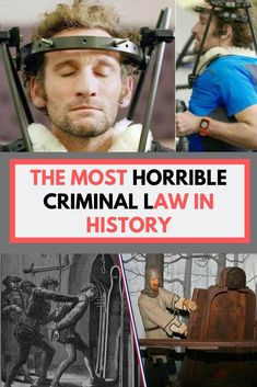 The most horrible criminal law in history Pet Raccoon, Hedgehog Pet, Pet Rats, Pets, Baby Monkey Pet, Ancient Greece Facts, Pet Lizards, Criminal Law, Weird Dreams