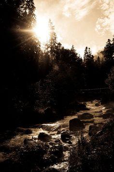 #peaceful http://www.effortless-abundance.net