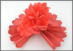 no: Store pomponger av silkepapir Ark, Store, Tips, Larger, Shop, Counseling