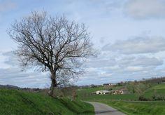 """On the road du """"Suech"""" !"""