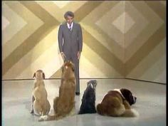 Steve Martin Comedy Routine With Dogs, Carol Burnett Show, 1976