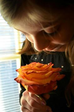 Camryns Rose