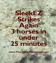 Take less time to remove all the winter hair with SleekEZ. Starting at $12.95. Made in the USA!  Find them at: https://thoughtfulequestrian.com/shop/sleekez-large/
