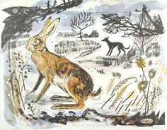 a beautifully presented animal blog full of March hares