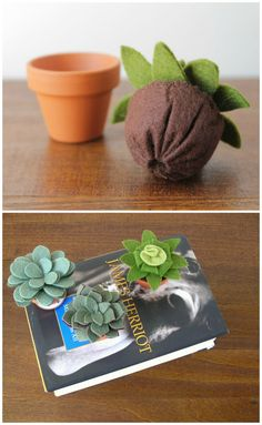 Small Felt Succulent // Artificial Potted Plant by OrdinaryMommy -for the girls room Felt Flowers, Diy Flowers, Fabric Flowers, Felt Diy, Felt Crafts, Diy Crafts, Felt Succulents, Succulent Pots, Felt Food