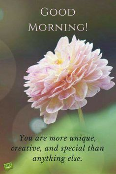 Special Good Morning Wishes Images Wallpaper Pictures Special Good Morning, Good Morning Friends, Good Morning Wishes, Good Morning Images, Good Morning Quotes, Morning Blessings, Morning Thoughts, Morning Gif, Good Morning Flowers