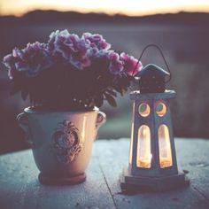 Söpöjä pikku lyhtyjä #ALE'ssa, kotiin, terassille tai puutarhaan http://www.salonsydan.fi/tuote-osasto/lyhdyt/