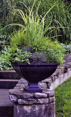 Beautiful green container garden