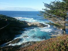 Driving along Highway 1 provides some of the best views in the country. The rugged California coast along Big Sur is a favorite place to visit for many students. #BigSur #Highway1 #CentralCoast