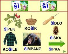 Psp, Education, Learning, Plants, Flora, Plant, Educational Illustrations, Planting, Teaching