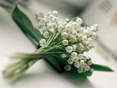 #Bouquet de #muguet · #Monde #féerique, #Belles #images