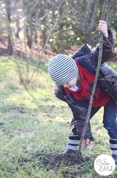 Crevette 'Planting Trees'
