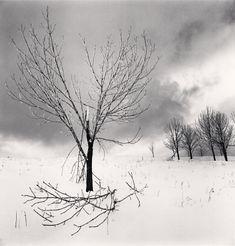 Michael Kenna - Photography