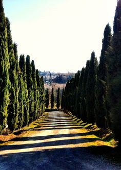 San Gimignano, Italy - Photo by Pablo Gerbasi with an iPhone 4