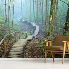 Search Results | Wallsauce AU Tree Murals, Wall Murals, Stairway Walls, Foggy Forest, Us Destinations, Library Images, Minimalist Furniture, Perfect Wallpaper, Wall Wallpaper