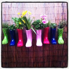 My gumboot garden - because my yard is far too small to plant herbs anywhere else!!