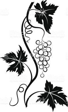 Decorative Stylized Grapevine with Grape bunch and Three Leaves royalty-free stock vector art Grape Drawing, Vine Drawing, Leaf Drawing, Wood Burning Patterns, Wood Burning Art, Wine Tattoo, Templer, Free To Use Images, Wine Bottle Crafts