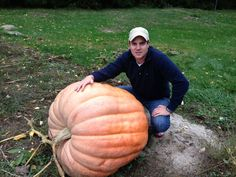 How to grow giant pumpkins for halloween