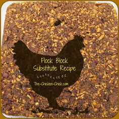 This looks like a good idea for winter when there isn't as much green stuff to keep the chickens busy. The Chicken Chick®: Flock Block Substitute Recipe. Healthy Boredom Buster for Chickens Chicken Chick, Chicken Feed, Chicken Coops, Chicken Houses, Healthy Chicken, Chicken Life, Keeping Chickens, Raising Chickens, Pet Chickens