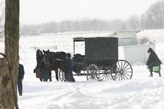 Amish in the snow