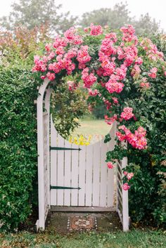 A Week On Nantucket, Part 2 - Gal Meets Glam - Gal Meets Glam A Week On Nantucket Part 2 – Pink climbing roses -