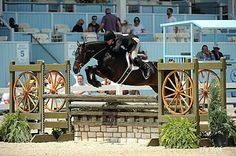 Scripted Takes Devon Grand Hunter Championship with Leading Hunter Rider Kelley Farmer