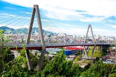 Pereira, Risaralda. San Francisco Skyline, Travel, Pereira, Colombia, Viajes, Destinations, Traveling, Trips, Tourism