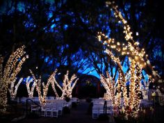 The ceremony/outdoor portion of our wedding venue at night. So romantic!