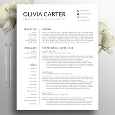 2 Page Resume Format Resume Template  Cover Letter 2 Page Cv A4  Letter Size