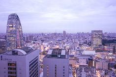 Hotels We Love: Keio Plaza Hotel, Tokyo, Japan