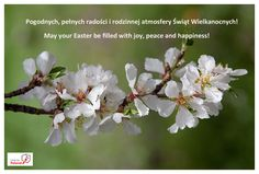 May your Easter be filled with joy, peace and happiness!