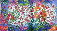 BLOG DA BETH: Livro Jardim Secreto-fazendo fundo com lapis de cor