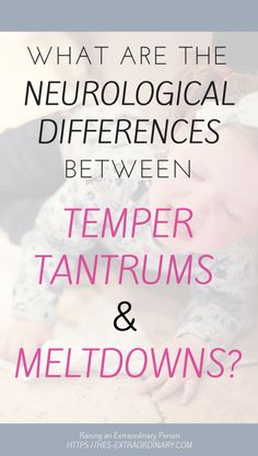 Executive Functions and the neurological differences between Meltdowns and Tantrums