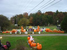looking from the road in front of the house at the right side of drive. Halloween Mitzel Style.
