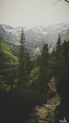 Tatry / morskie oko Tatra Mountains, Heart Of Europe, Pine Forest, Beautiful Places In The World, Beautiful Architecture, Abandoned Places, Mother Earth, The Great Outdoors, Nature Photography