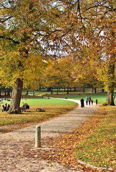 Bois de la Cambre - o meu ar puro - saudades! I use to play in that park when I was a little girl. Wonderful memories!