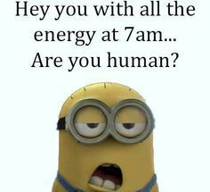 33 Minion Quotes for Nearly Everyone #minions #minionmemes #minionpics #minionpictures #minionquotes