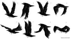 Le corbeau casse-tête - L'AutocArt des arts visuels                                                                                                                                                                                 Plus