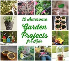 Garden Projects for Toddlers