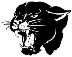 panther paws | Photos - Mascots