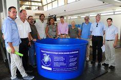 Dénia Se Suma A La Recuperación De Tortugas Marinas Del Proyecto Del ARCA Del Mar
