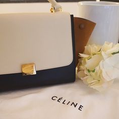 Winter 2015 Celine Trapeze
