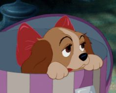 Walt Disney gave his wife a puppy in a hat box for christmas which inspired this moment in Lady and the Tramp. My dream come true a puppy under the christmas tree with a red bow on. Walt Disney, Disney Dogs, Cute Disney, Disney Magic, Disney Cartoons, Disney Movies, 90s Cartoons, Disney Viejo, Lilo Et Stitch