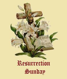 Beautiful graphics of Easter images Easter Lily Images, Easter Images Religious, Easter Pictures, Easter Pagan, Lily Pictures, Christ Is Risen, Easter Wishes, Easter Art, Easter Cross