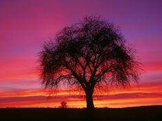 15 Breathtaking Beautiful Sunsets