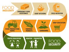 Food Insecurity Infographic