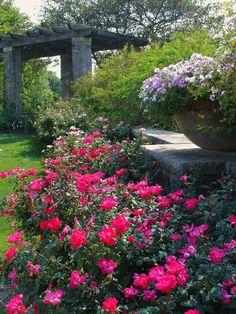 Boerner Botanical Gardens #D2E #downtoearth #myd2egardendesign