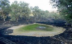 A drained pond sits surrounded by scorched land after the the Butts fire burned through Snell Valley, California July 3, 2014. REUTERS/Noah Berger